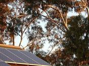 Computer Modeling Helps Form Effective Solar Energy Policy