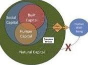 Changes Global Value Ecosystem Services
