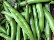 Broad Bean Feta Ravioli