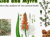 Aloe Myrrh: Modern Analysis Ancient Herbs