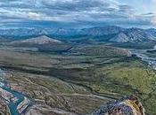 Wild Heart Yukon Gravest Peril