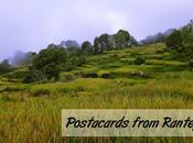 Postcards from Rantepao, Indonesia