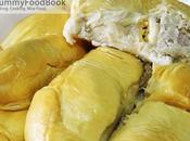 Durian Blogs Visit This Season
