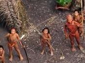 Fatal Clash Civilisations? 'Lost' Amazonian Tribe Under Threat from Illegal Loggers Operating Their Traditional Territories