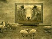 #112 Aphorism Week: Sheeple