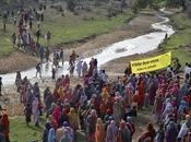 India's Turning Point: Greenpeace Alleges Threats, Intimidation Over Madhya Pradesh Coal Project