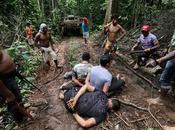 PHOTO REPORT: Amazon Indian Warriors Beat Strip Illegal Loggers Battle Jungle's Future